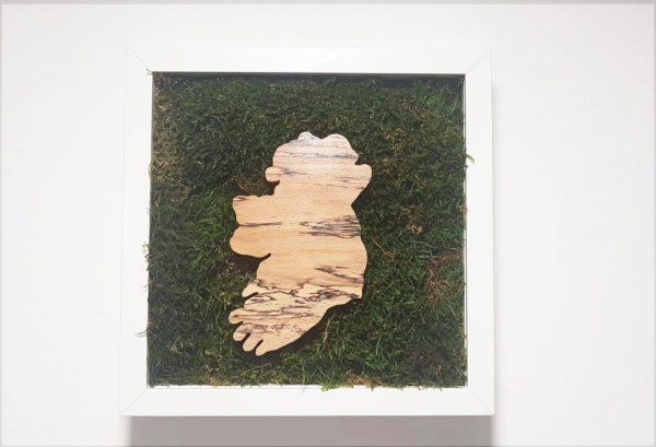 Flat moss map of Ireland