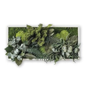 Mixed moss wall art with preserved plants 40x50 cm