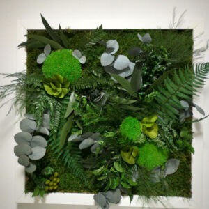Mixed flat and bulb moss with preserved plants
