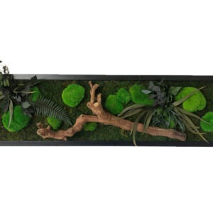 Moss Wild Forest Wall Art 40x140 cm