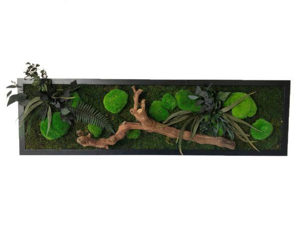 Moss Wild Forest Wall Art 40x140 cm