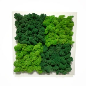 Chess wall art with reindeer moss
